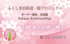 桜プロジェクト表裏_03